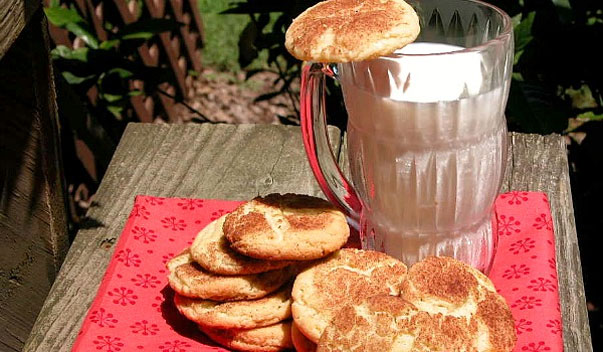 Snickerdoodles by Cafe Terra Blog