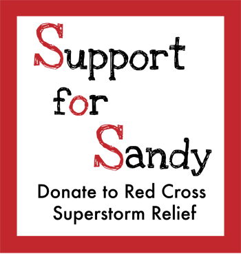 Support for Sandy